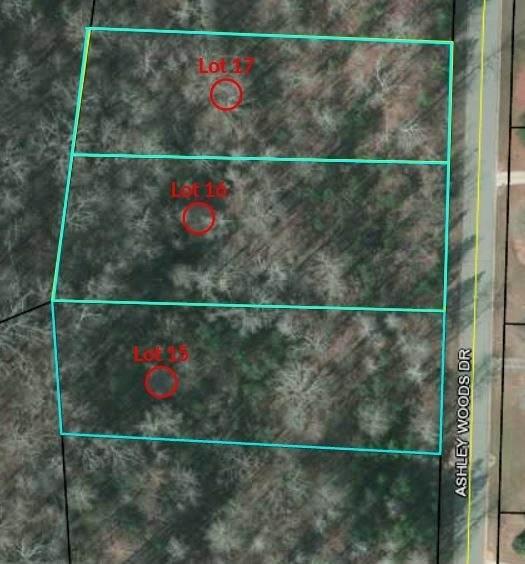 0 Ashley Woods Drive Lot 17, Newnan, GA 30263 (MLS #9068588) :: Anderson & Associates