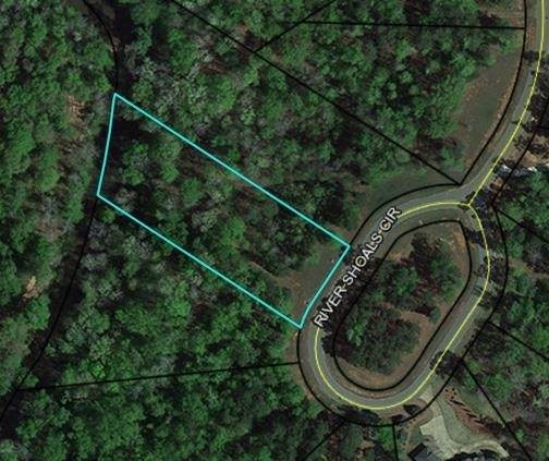 106 River Shoals Circle, Forsyth, GA 31029 (MLS #9070106) :: Athens Georgia Homes