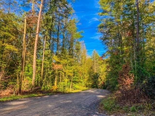 0 Bates Drive Lt169, Ellijay, GA 30540 (MLS #9071036) :: Statesboro Real Estate