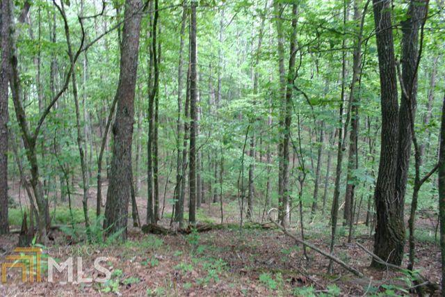 0 Little Hawk Rd, Sautee Nacoochee, GA 30571 (MLS #7231856) :: Crest Realty