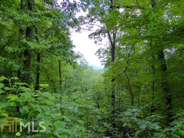 0 Shadow Mountain Dr #31, Dillard, GA 30537 (MLS #7509956) :: Rettro Group
