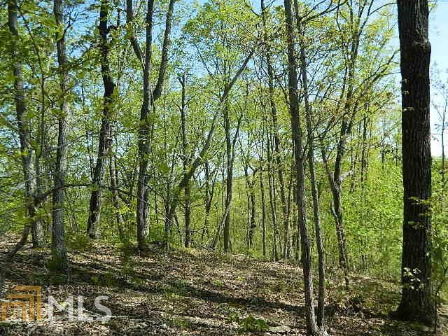 0 Teel Pt Lot 8, Cleveland, GA 30528 (MLS #7532947) :: Rettro Group