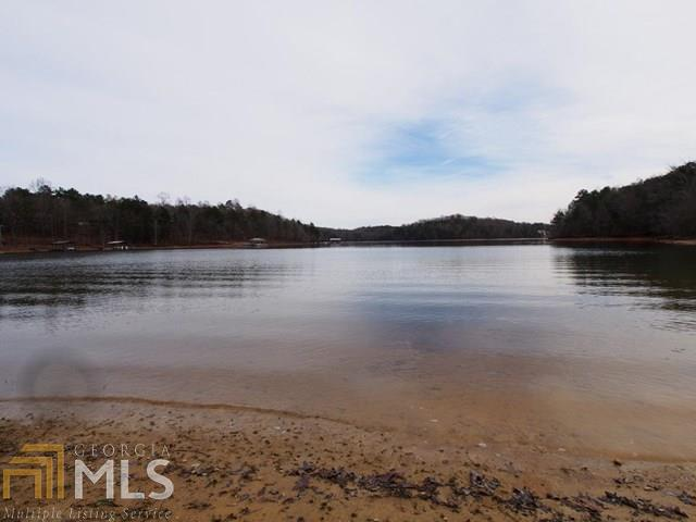0 Chateau Estates And Harvey Tract 30, Lavonia, GA 30553 (MLS #7559641) :: Anderson & Associates
