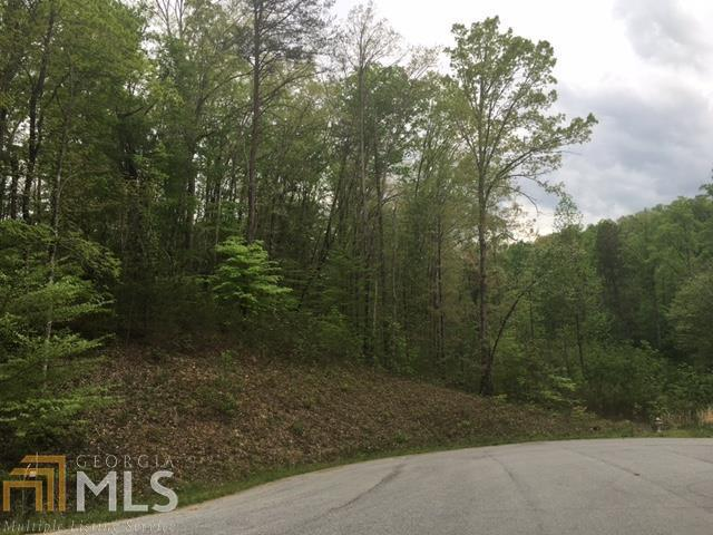 0 Trails Of Long Mountain #12, Cleveland, GA 30528 (MLS #7628904) :: Anderson & Associates