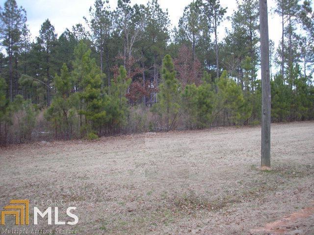 0 Bobbitt Farm Rd Tr C-1, Dudley, GA 31022 (MLS #8352447) :: Anderson & Associates