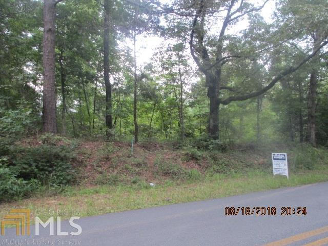 0 Twin Lakes Rd - Photo 1