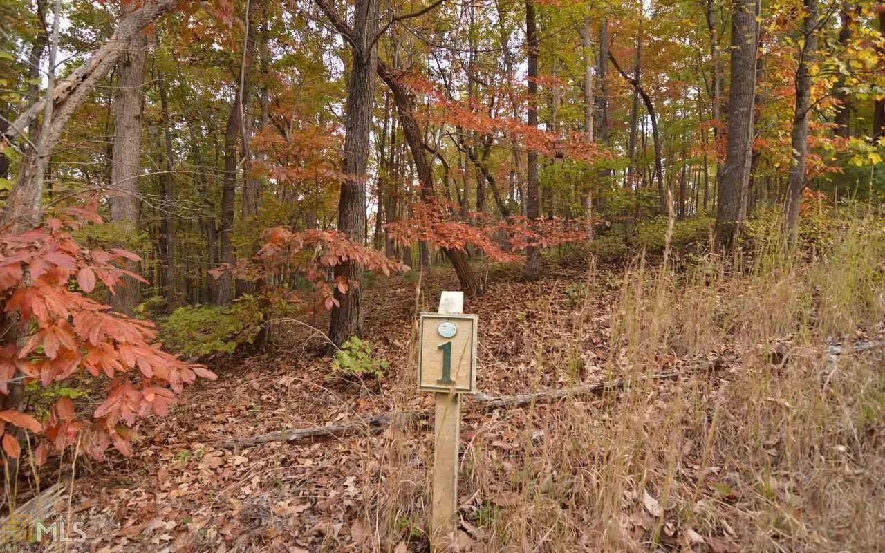 0 Serenity Ridge - Photo 1
