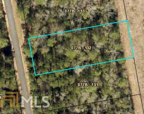 0 Settlers Trl Lot 132, Woodbine, GA 31569 (MLS #8577938) :: Maximum One Greater Atlanta Realtors