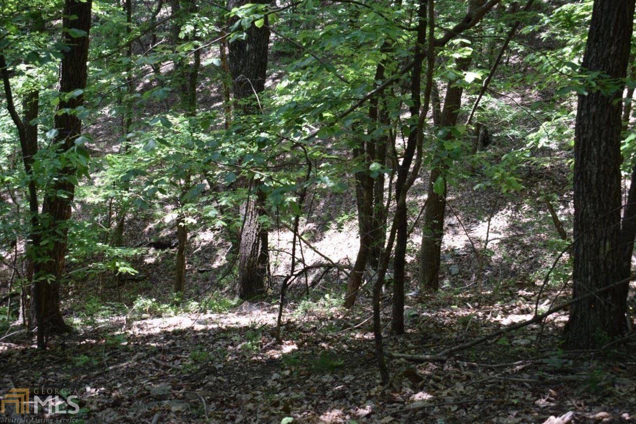 4522 Sassafras Mountain Trail - Photo 1
