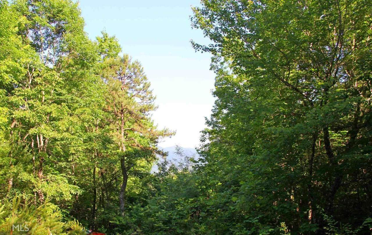 0 Bluff Mountain Lane - Photo 1
