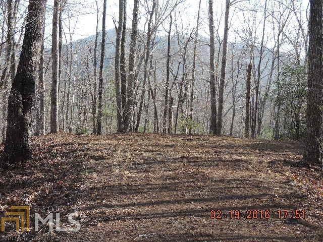 L28 Mission Ridge - Photo 1