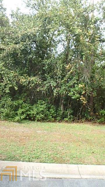 0 Misty Harbor Blvd Lot 159, Woodbine, GA 31569 (MLS #8711374) :: The Heyl Group at Keller Williams