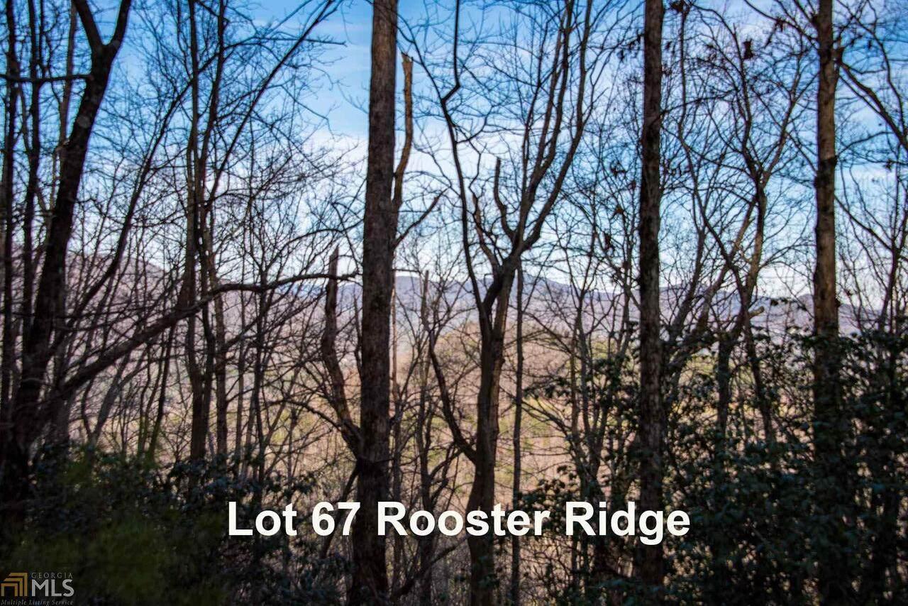 0 Rooster Ridge - Photo 1