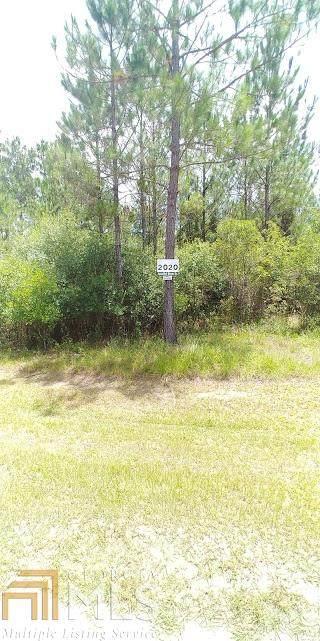 2020 Janell's River Dr, Folkston, GA 31537 (MLS #8754579) :: AF Realty Group