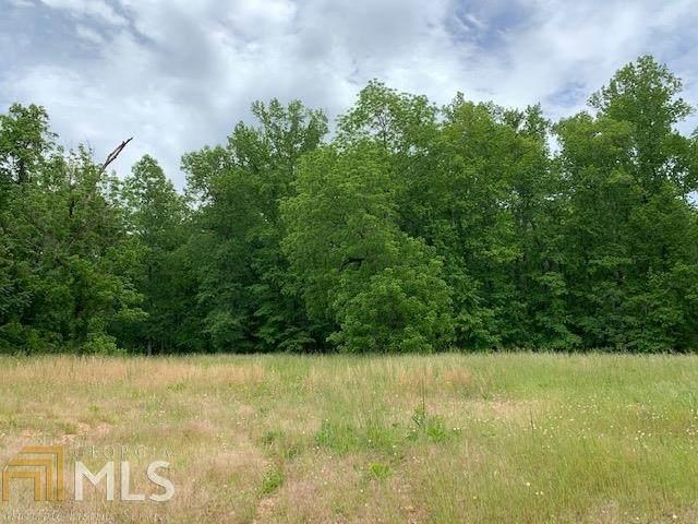 0 Binford Rd, Newborn, GA 30056 (MLS #8785354) :: Buffington Real Estate Group