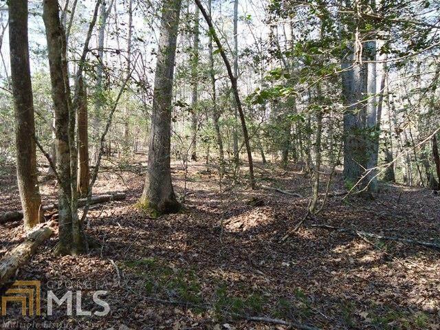 0 Hanes Ridge Court Lot 48, Clarkesville, GA 30523 (MLS #8817035) :: Maximum One Realtor Partners