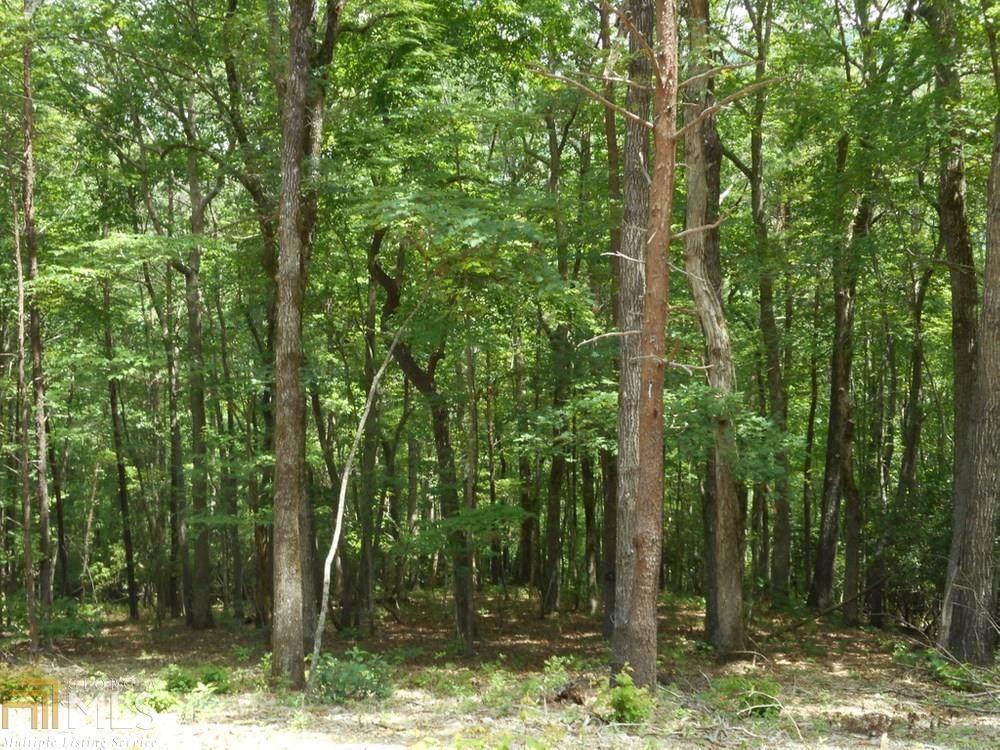 3114 Oakey Mountain Road - Photo 1