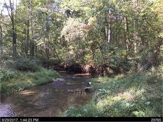 3316 Clear Creek Rd, Ellijay, GA 30536 (MLS #8843444) :: Tim Stout and Associates