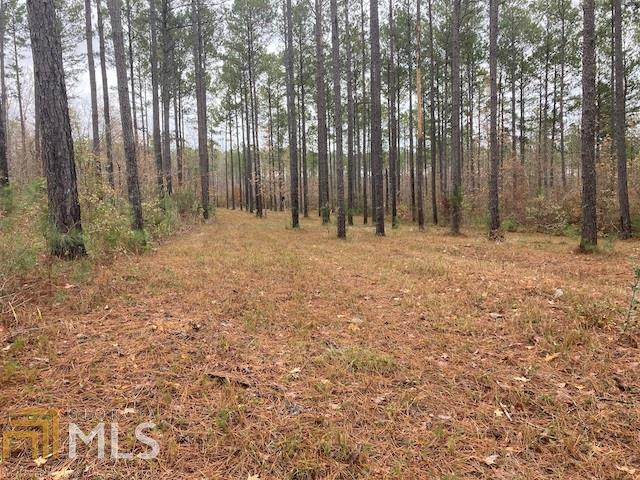 0 James Posey Rd, JUNCTION CITY, GA 31812 (MLS #8850685) :: AF Realty Group