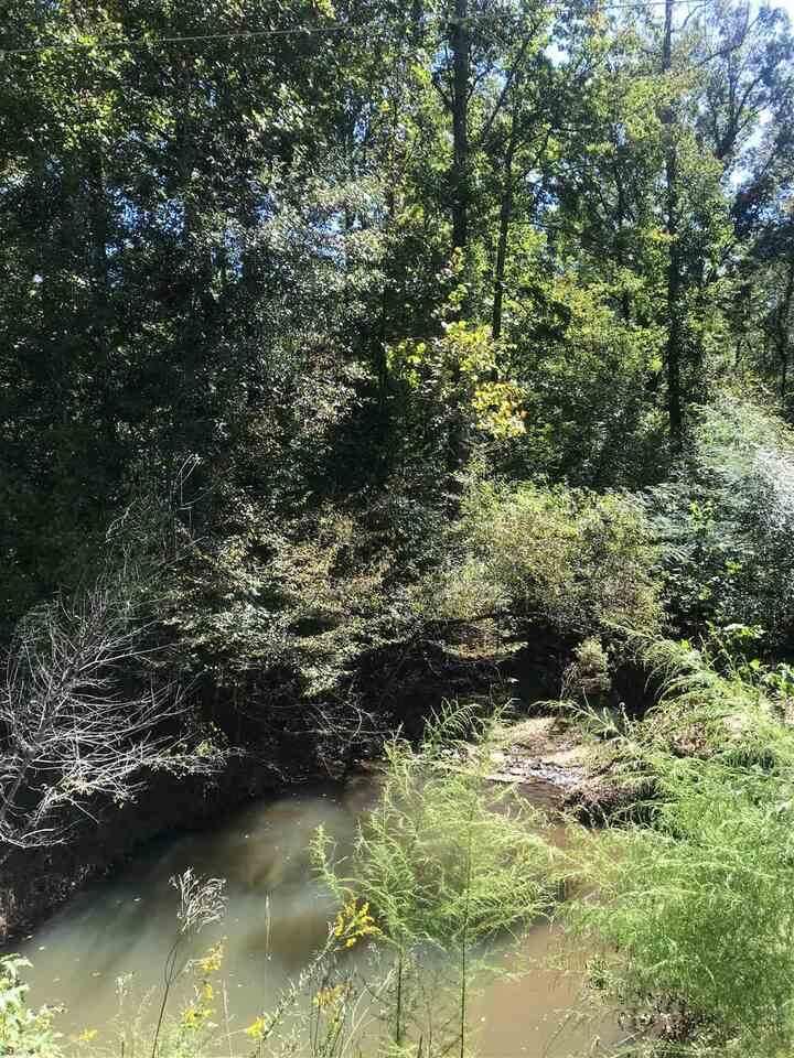 0 Turk Creek Trail - Photo 1