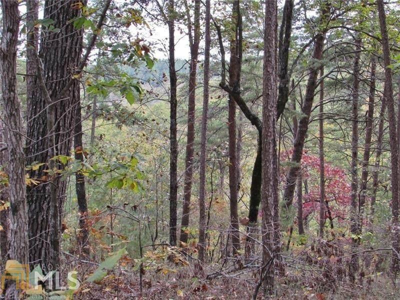 1336 Birch Lane - Photo 1