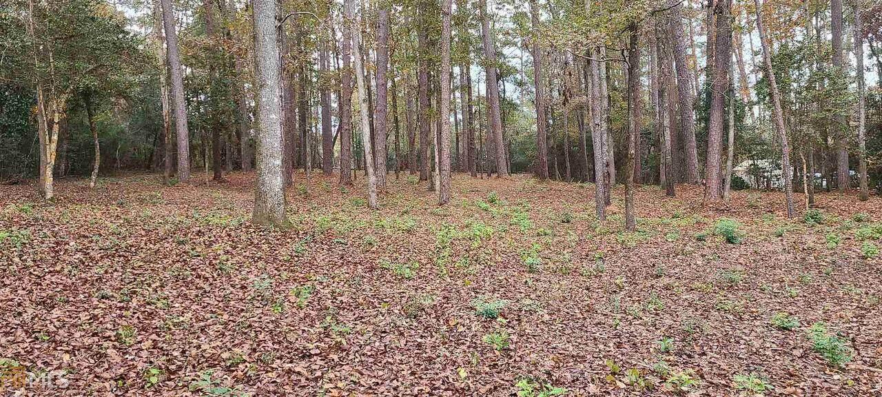 0 Woodland Trails Road - Photo 1