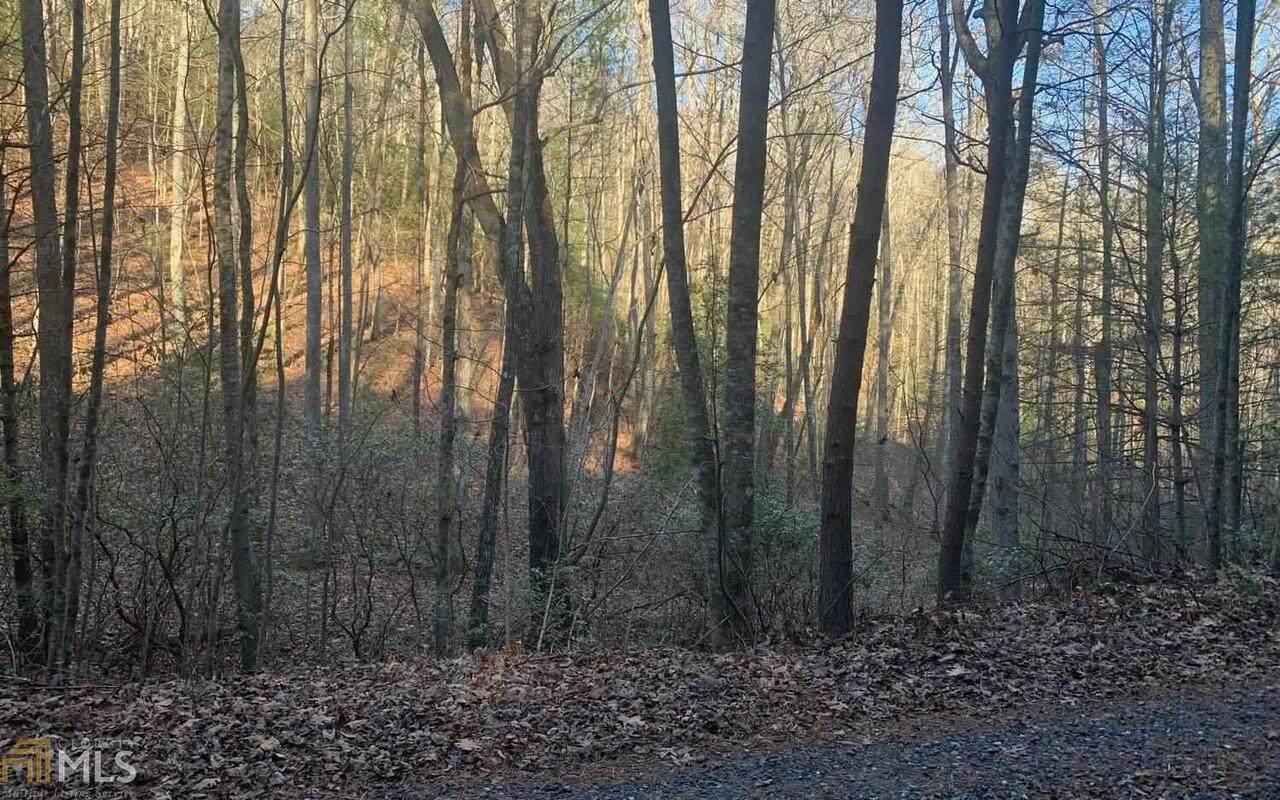 0 Allison Ridge - Photo 1