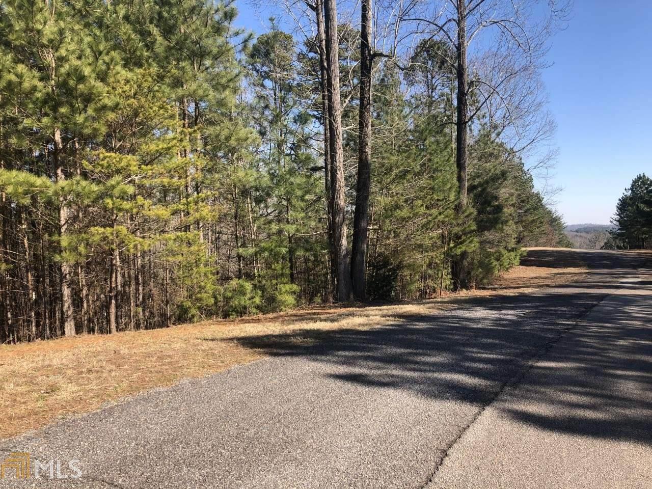 131 Rock Creek Trail - Photo 1