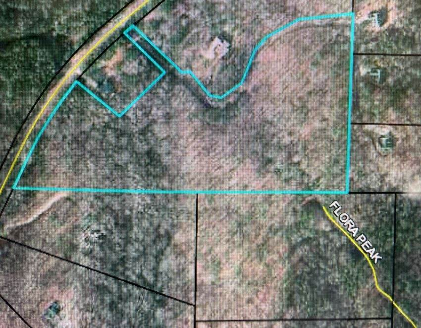 TRACT 5 WOODS R Wagers Mill - Photo 1