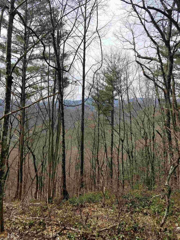 0 Winding Ridge One - Photo 1