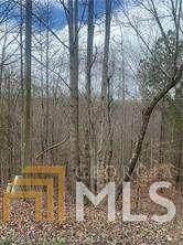 233 Smith And Wesson, Jasper, GA 30143 (MLS #8951141) :: Rettro Group