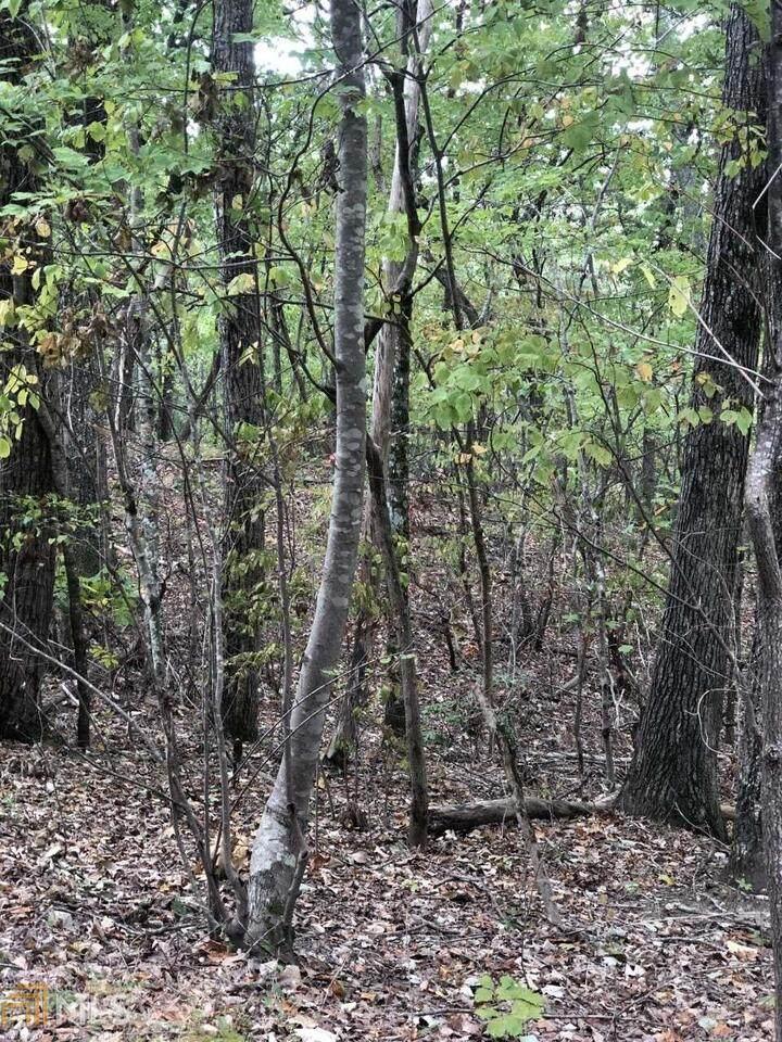 0 Laurel View Drive - Photo 1