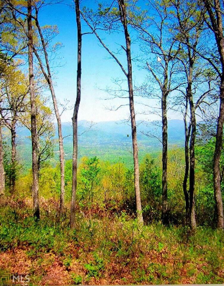 54 Mountainside Drive - Photo 1