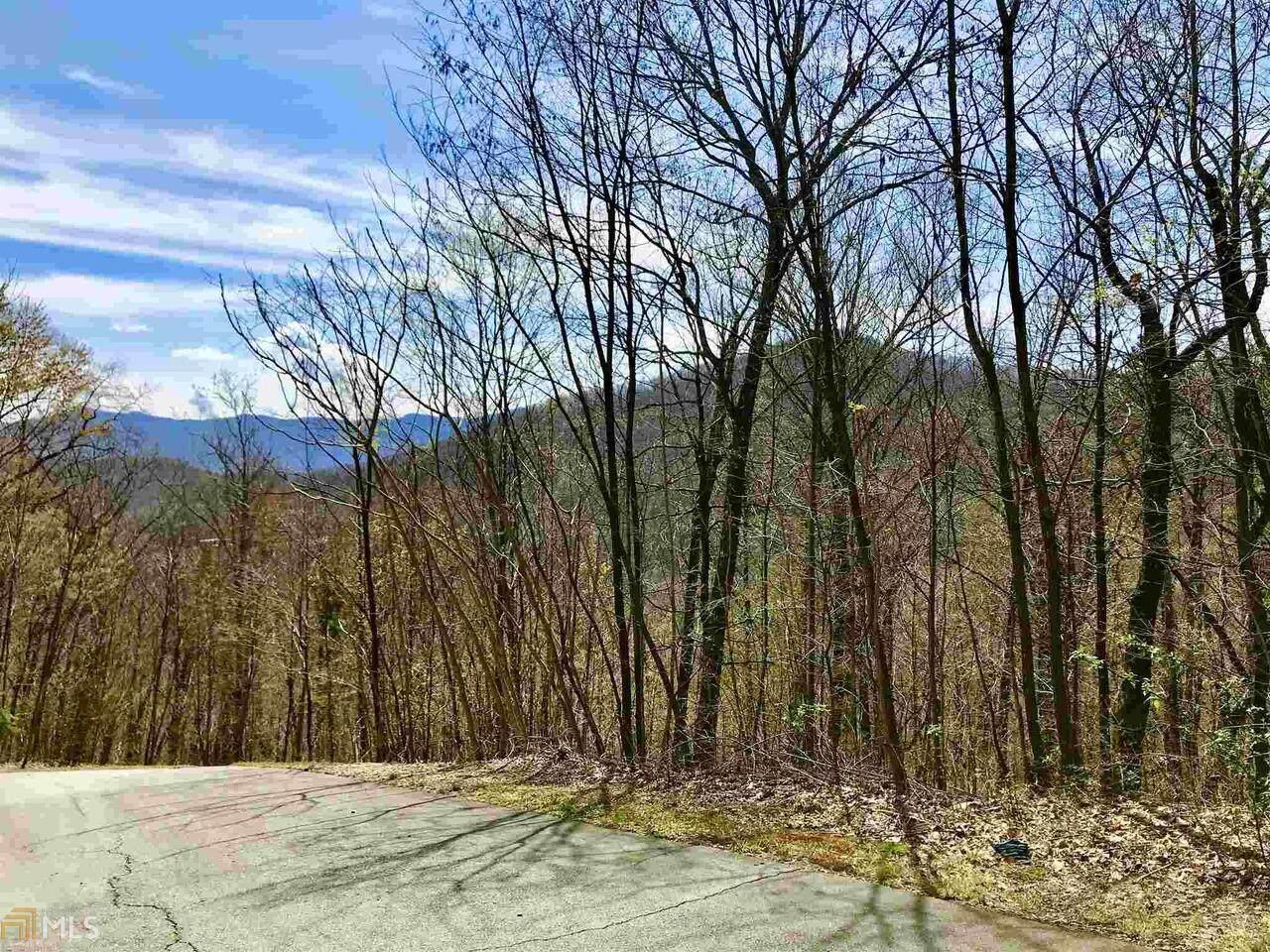50 Overlook Trail - Photo 1