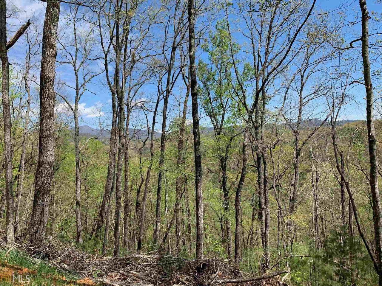0 Bird Hunter Trail - Photo 1