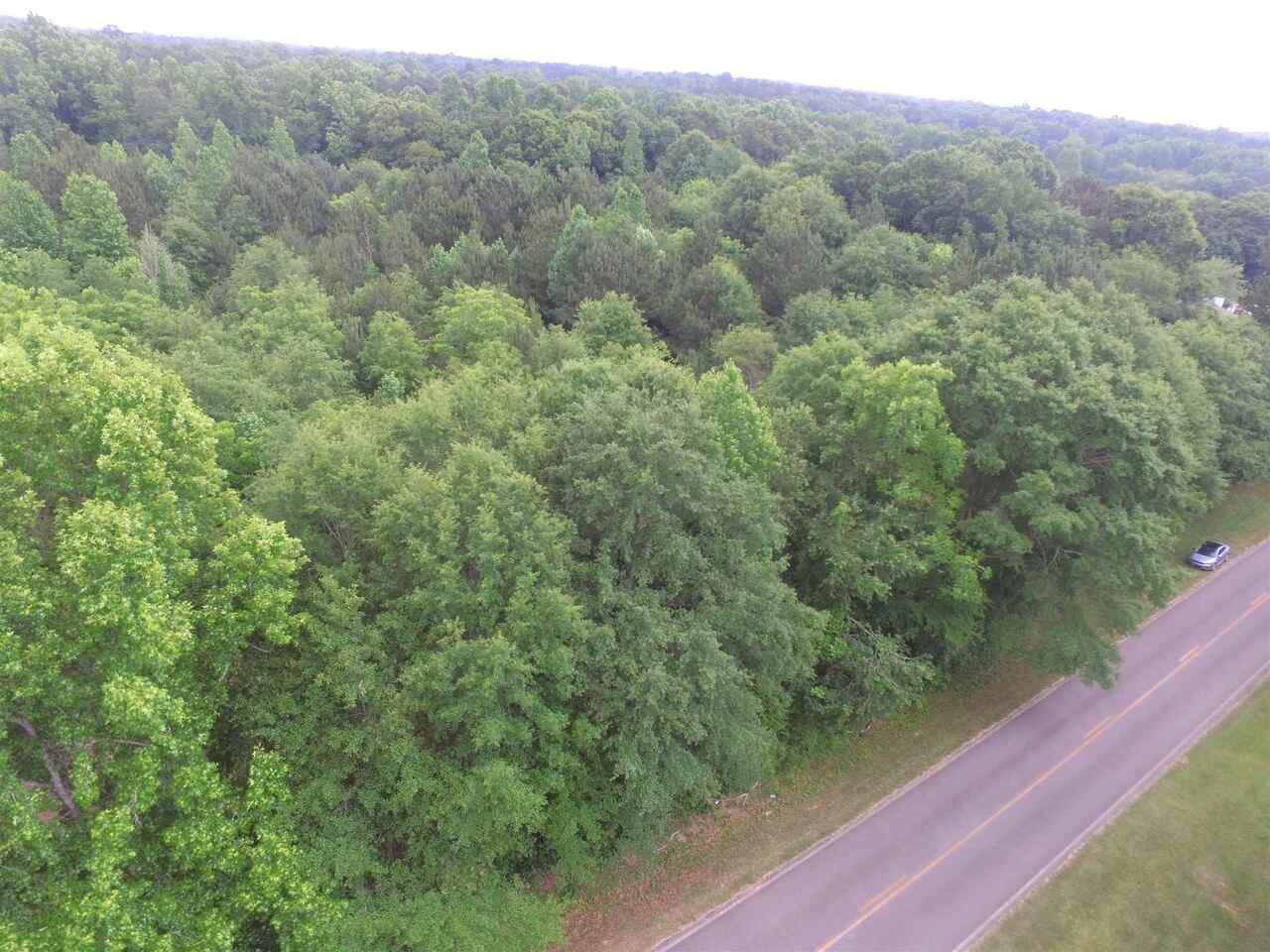 0 Pedenville Road - Photo 1