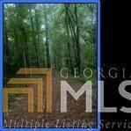 0 Hemphill Rd, Griffin, GA 30224 (MLS #8991884) :: The Ursula Group