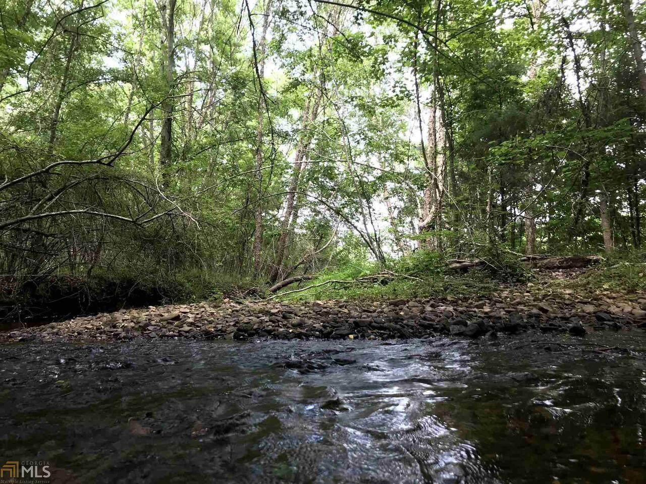 0 Dorton Creek Road - Photo 1