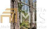 0 Soapstone Creek Circle - Photo 6