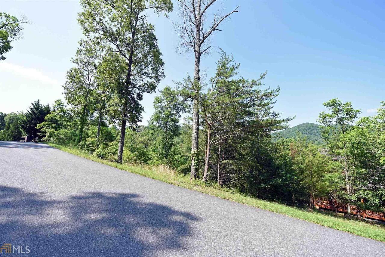 0 Brasstown View Road - Photo 1