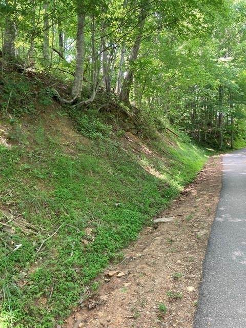0 Mining Gap Trail - Photo 1