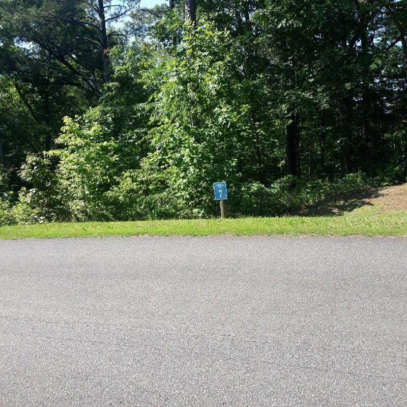 0 Harris Creek Drive - Photo 1