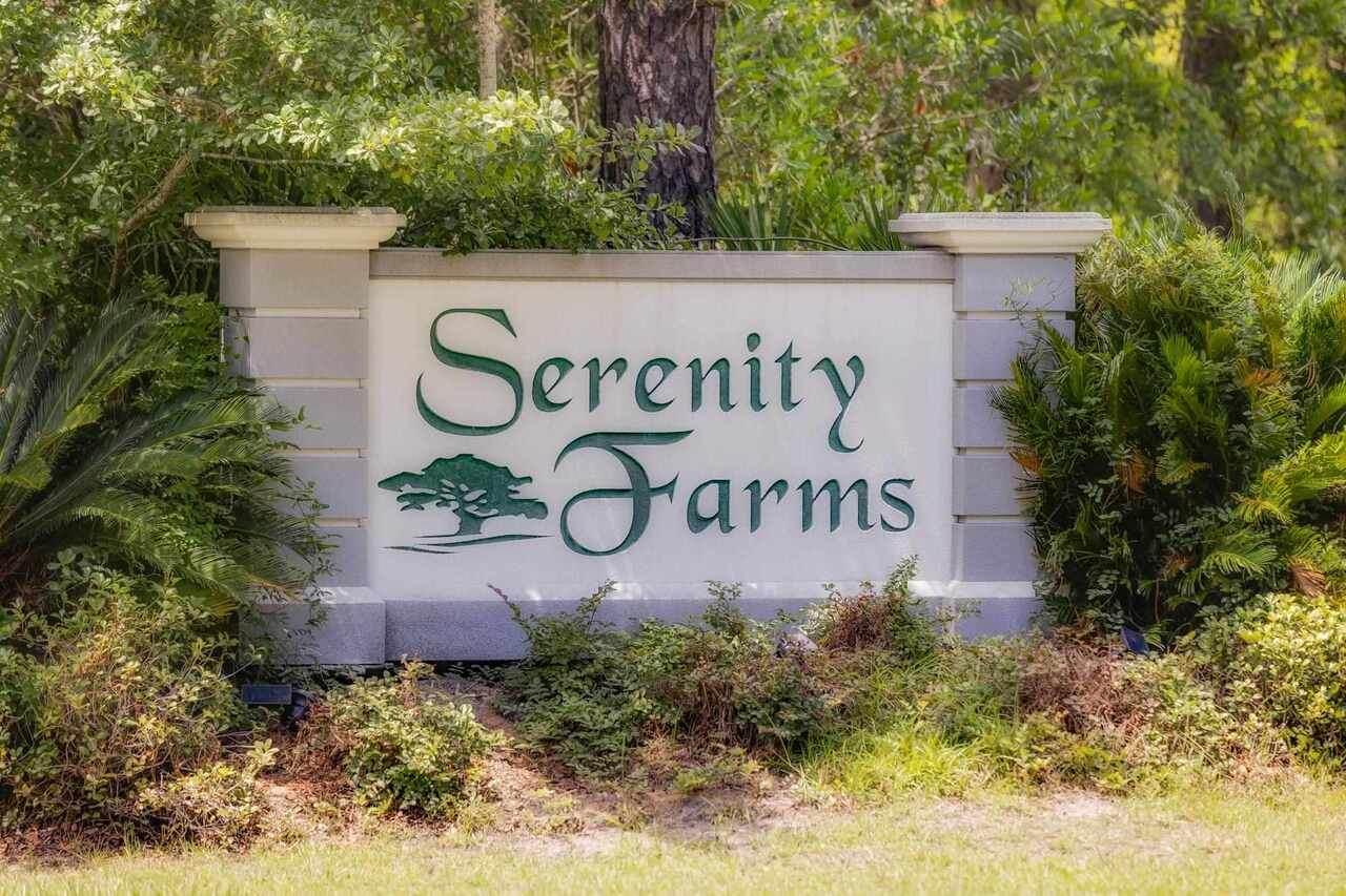 0 Serenity Farms Road - Photo 1