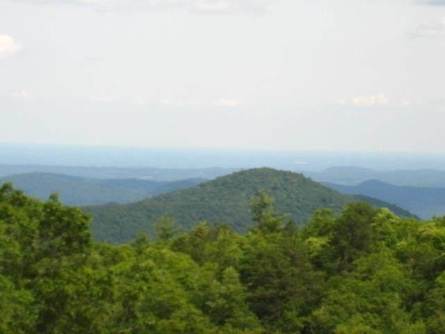 0 Hale Ridge Road - Photo 1