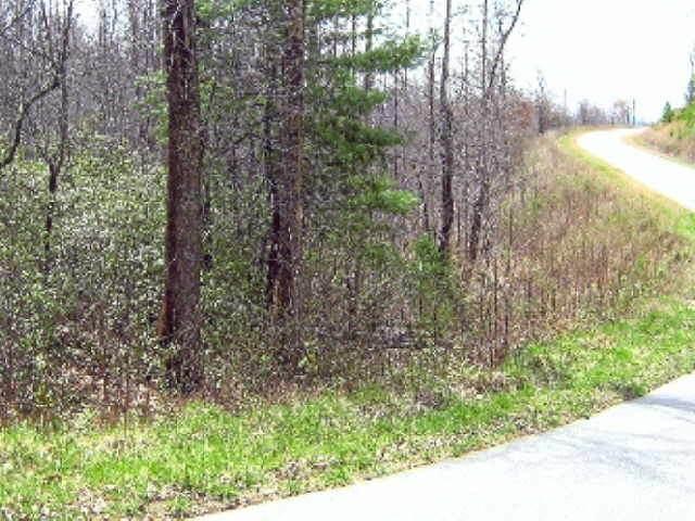 0 Heyden Ridge Drive #25, Clarkesville, GA 30523 (MLS #9010954) :: Athens Georgia Homes