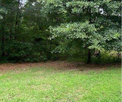 4085 Hogans Mill Lane, Loganville, GA 30052 (MLS #9011812) :: Rettro Group