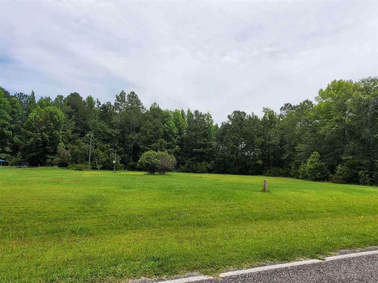 876 Savannah Town Road - Photo 1