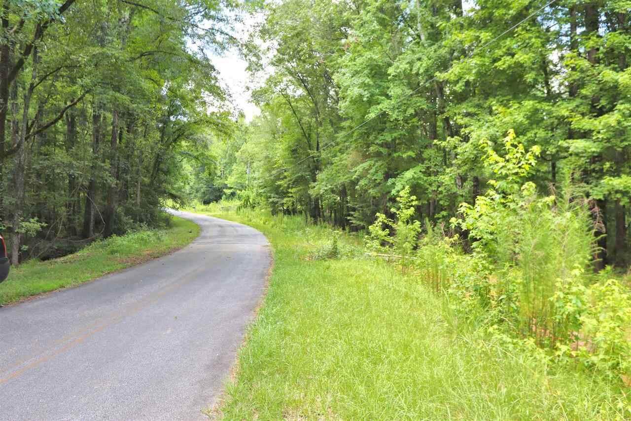 0 Steel Bridge Trail - Photo 1