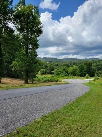 0 Annes Way, Blairsville, GA 30512 (MLS #9017424) :: Rettro Group