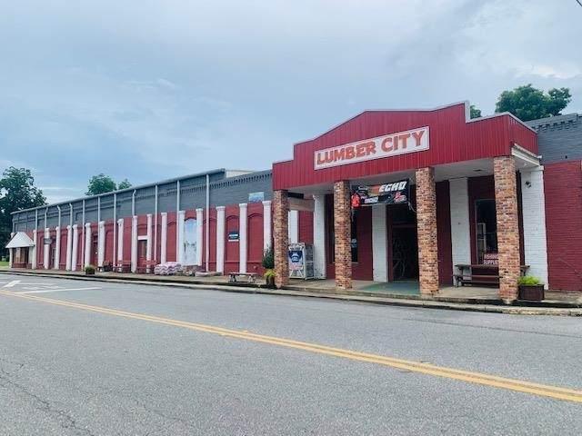 15 Main Street, LUMBER CITY, GA 31549 (MLS #9018075) :: Houska Realty Group